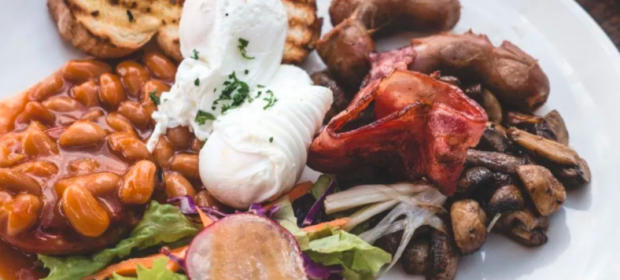 nadmiar białka w diecie, organiźmie
